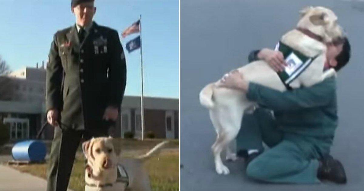 former trainer.jpg?resize=1200,630 - Un ancien combattant, maître d'un chien d'assistance, emmène son animal voir son ancienne dresseuse à la prison pour femme. Leurs retrouvailles font chaud au coeur !