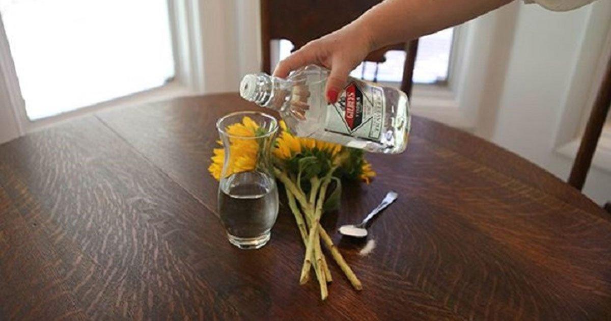 make flowers live longer featured.jpg?resize=412,232 - How To Arrange Flowers And Make Them Last Longer