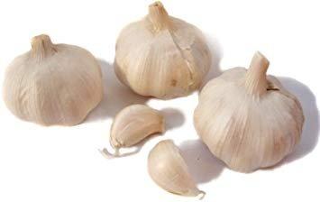 Image result for fresh garlic.