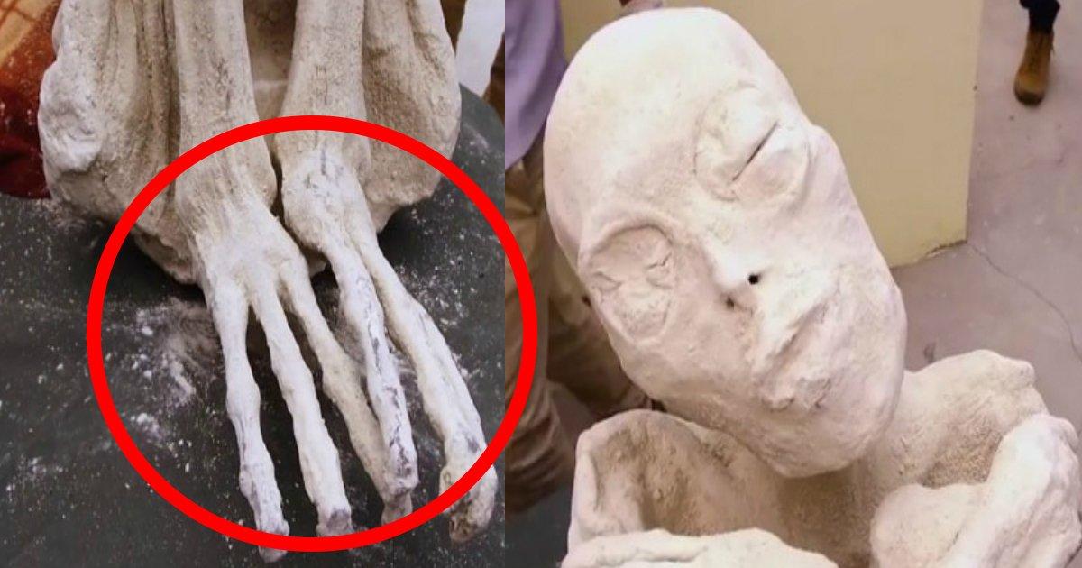 mummy ttl.jpg?resize=648,365 - 【新種人類!?】三本指の真っ白なミイラが発見される!