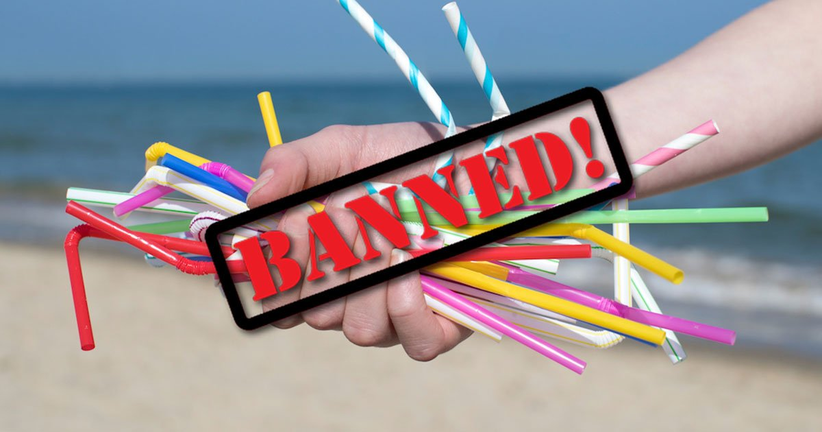 seattle becomes the first major american city to ban plastic straws at restaurants and bars to protect the environment.jpg?resize=636,358 - Seattle Becomes The 1st Major City To Ban Plastic Straws At Restaurants And Bars