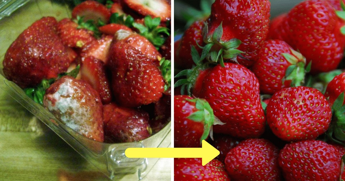 strawberries featured.png?resize=412,232 - Farmers Reveal Ultimate Secret To Keep Berries Fresh For Weeks
