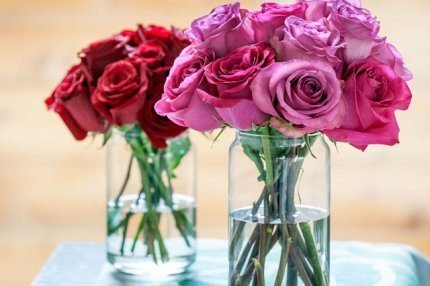 spring2015_roses2