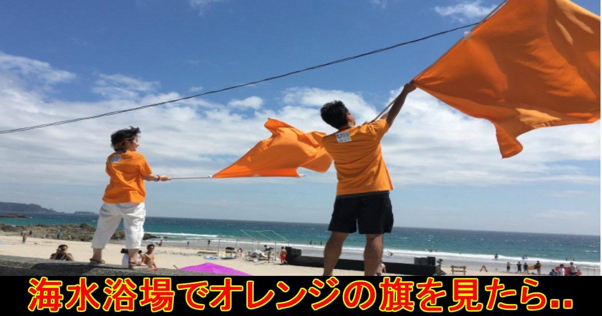 unnamed file 50.jpg?resize=300,169 - 海水浴場で『オレンジ色の旗』を見かけたら即避難を!