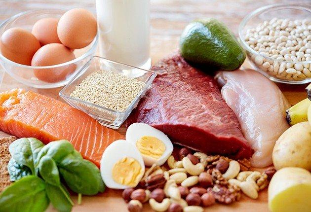 タンパク質에 대한 이미지 검색결과