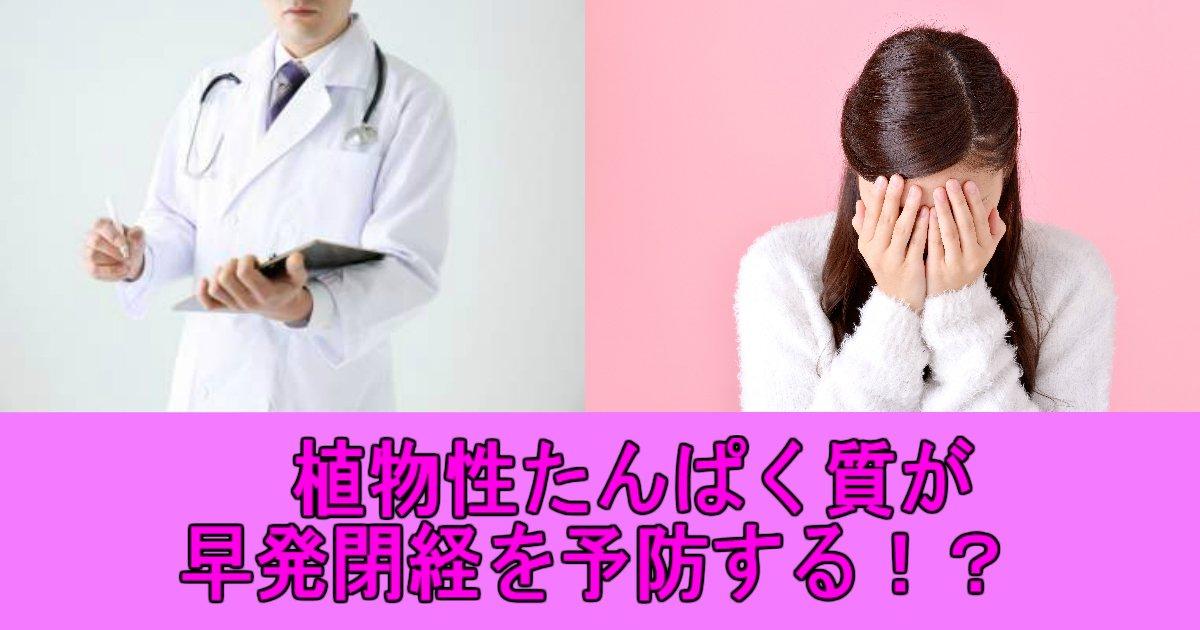 1 51.jpg?resize=648,365 - 植物性たんぱく質の摂取で女性の早発閉経を防ぐことができる?