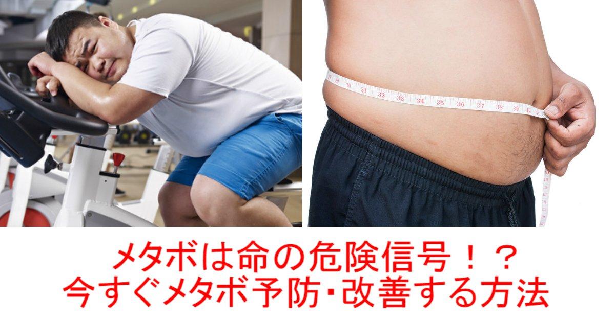 1 61.jpg?resize=1200,630 - 【メタボは命の危険信号!?】生活習慣を変えるだけで改善できる
