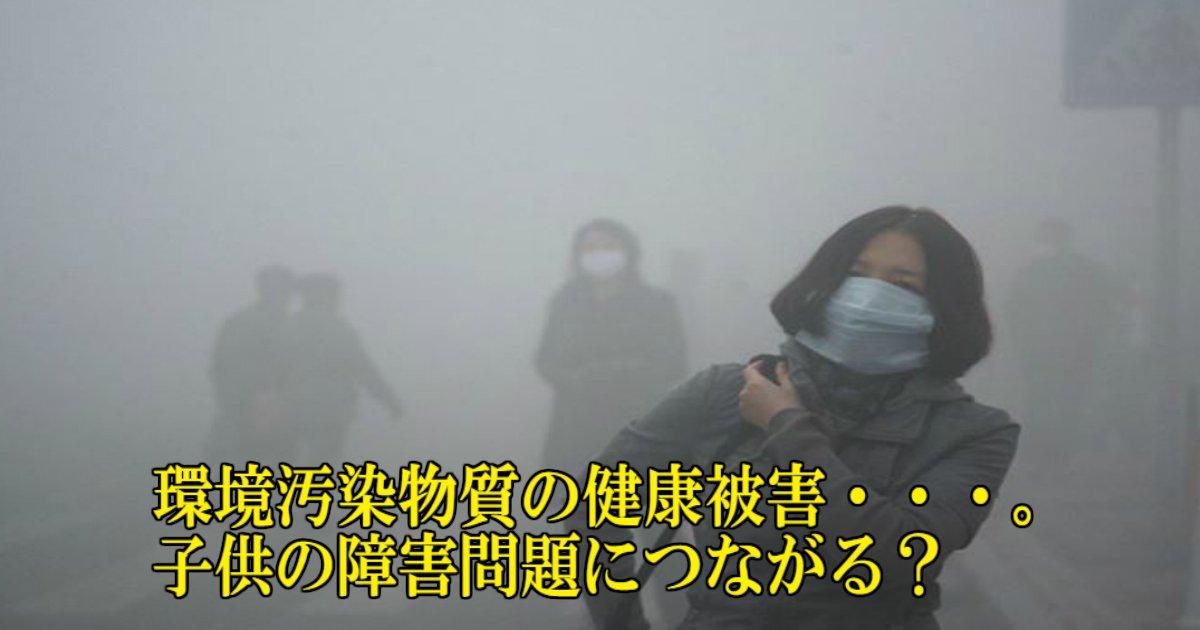 2 17.jpg?resize=1200,630 - 環境汚染物質が健康に大きな悪影響を及ぼす・・。