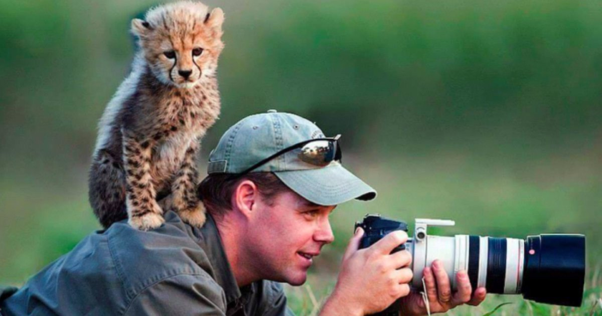 2 193.jpg?resize=1200,630 - 29 of the Most Incredible Photos of Animals Interrupting Wildlife Photographers