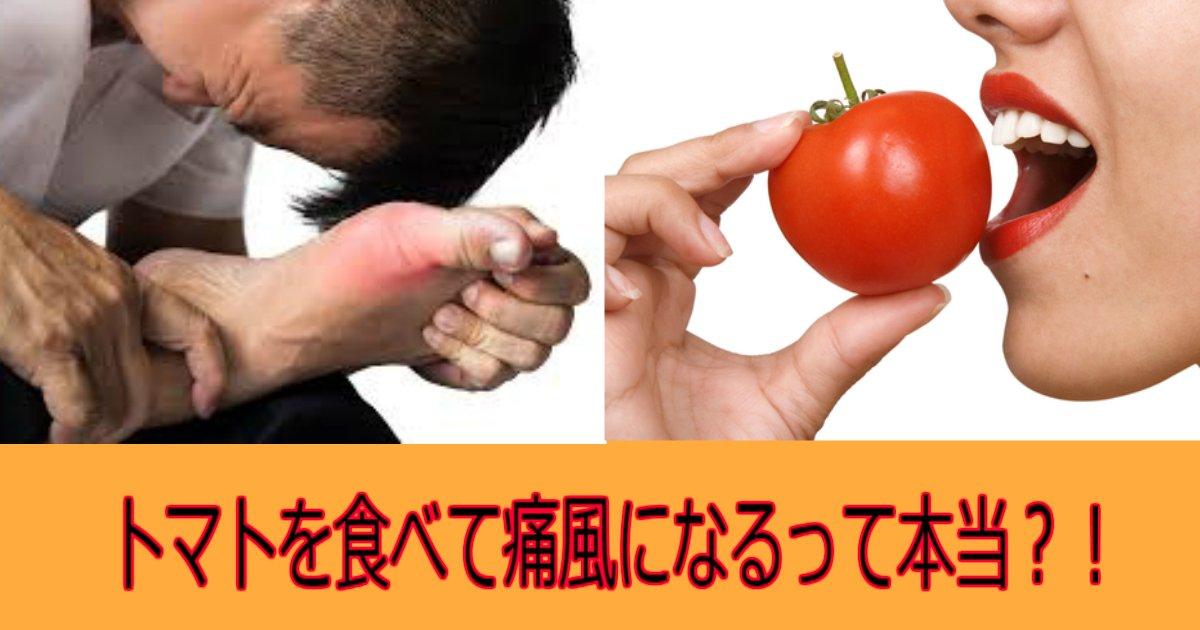 2 6.jpg?resize=1200,630 - 【研究】トマトで痛風になるって本当?!