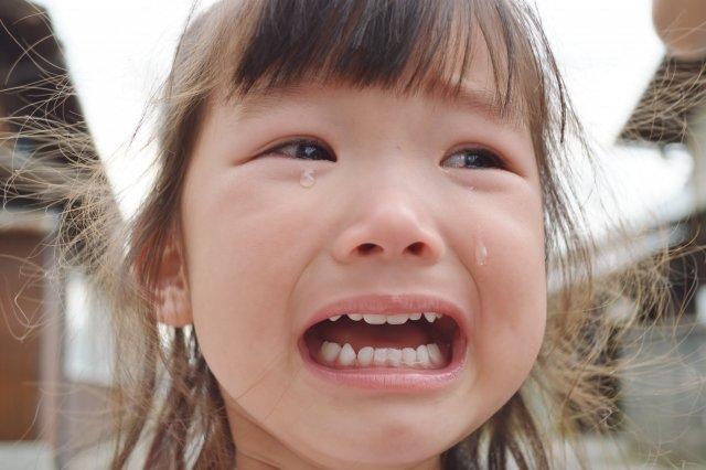 「子供 ひいき」の画像検索結果