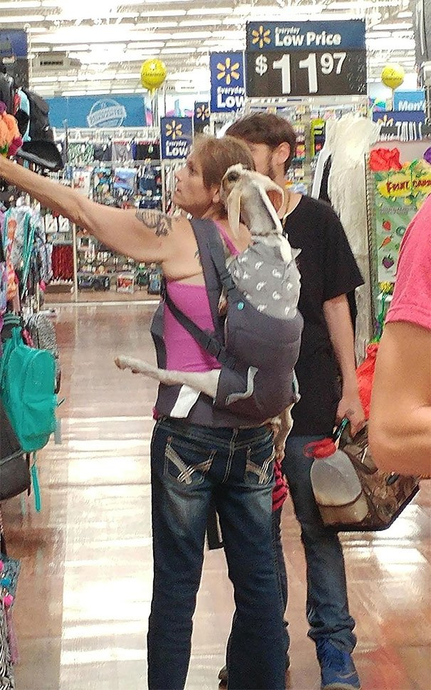 Girl Brings A Goat Into Store