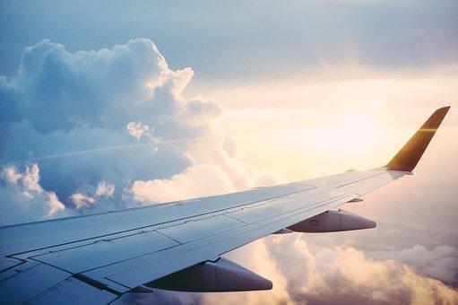 비행기, 여행, 찾아보기, 발견, 하늘, 날개, 높이 치솟다, 비행