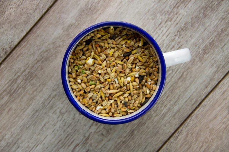 Bird seed in an enamel cup