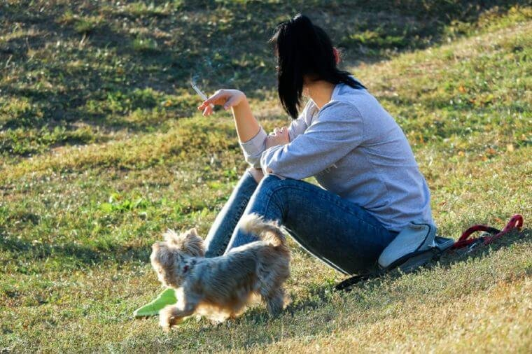 Smoking concept - a young girl with a dog sitting in a park having a cigarette