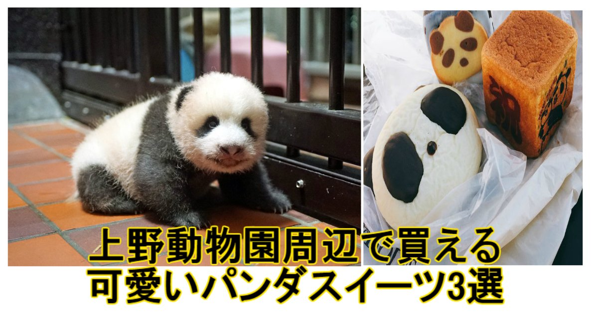 a 10.jpg?resize=1200,630 - 手土産にいい!上野動物園周辺で買える可愛いパンダスイーツ3選