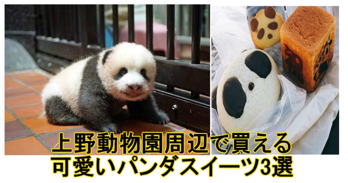 a 10.jpg?resize=300,169 - 手土産にいい!上野動物園周辺で買える可愛いパンダスイーツ3選