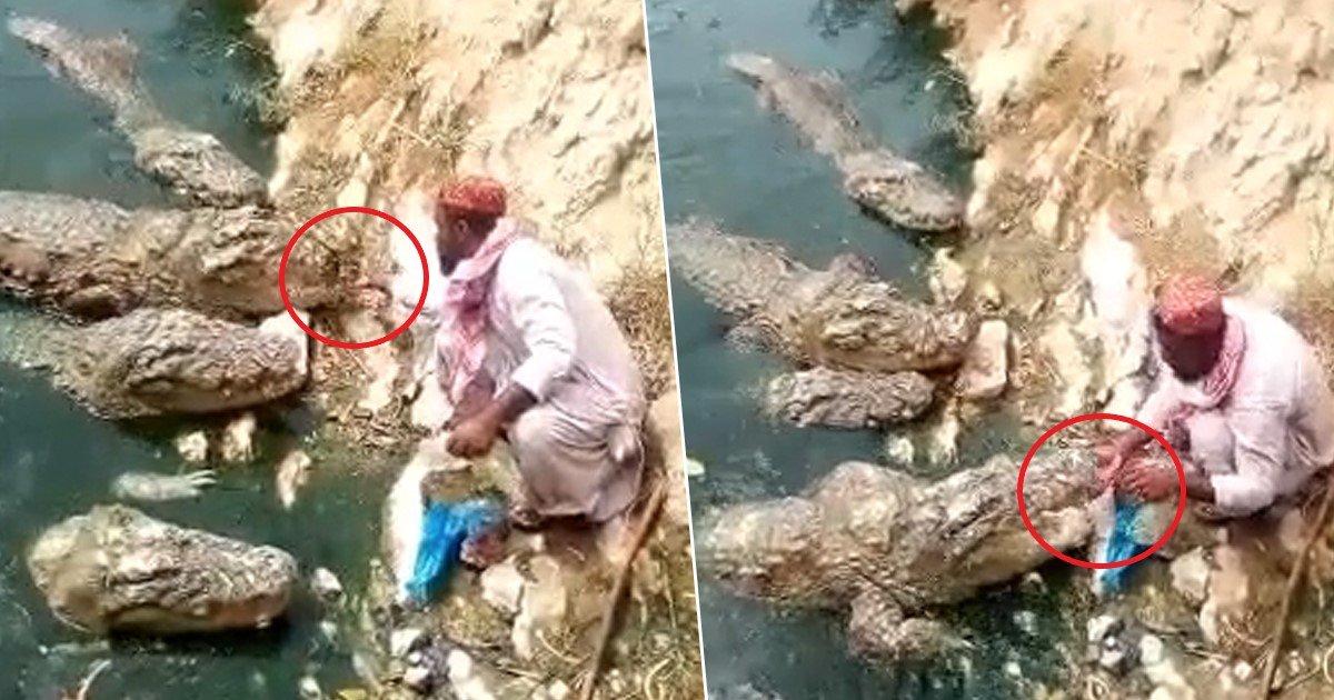 a 13.jpg?resize=412,232 - Un homme nourrit des crocodiles gigantesques à quelques centimètres de lui dans un village africain
