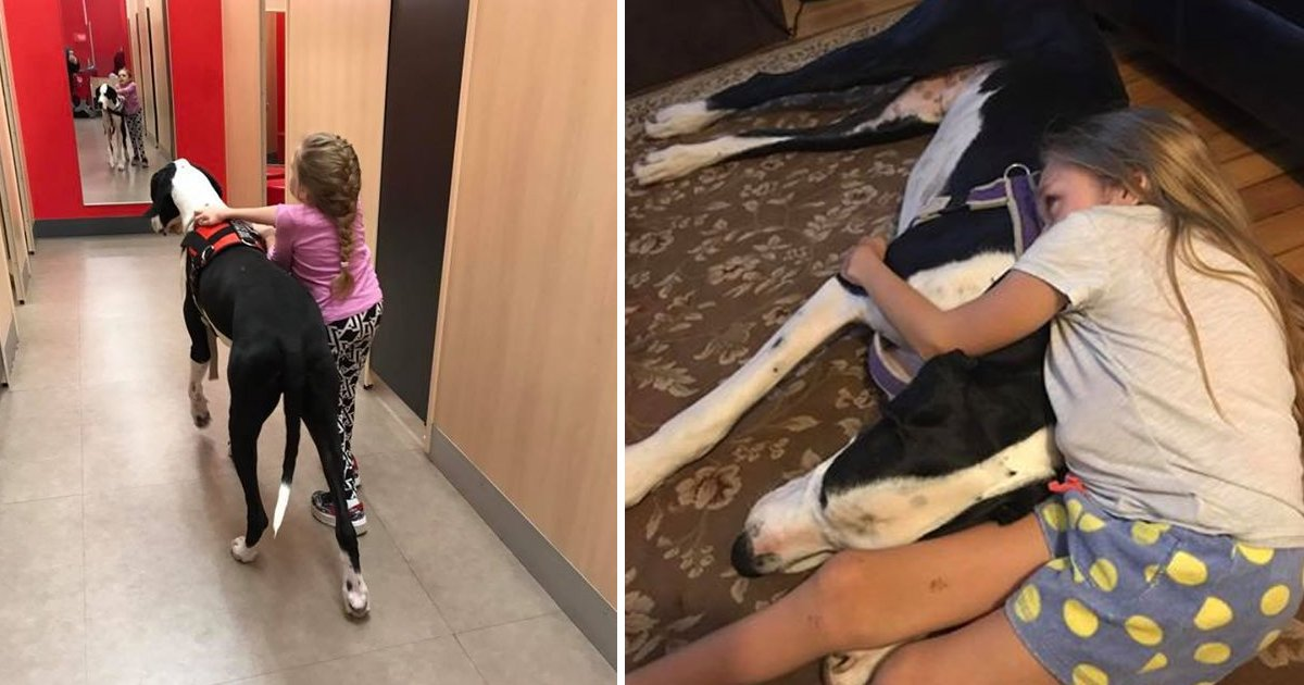 bbga.jpg?resize=636,358 - Service Dog Helps Girl With Birth Defect Walk Again. And Is Showered With A Heartwarming Treat