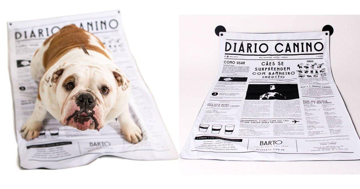 capa8 1.png?resize=1200,630 - Tapete higiênico lavável e sustentável é a melhor aposta para quem tem cachorros em apartamento