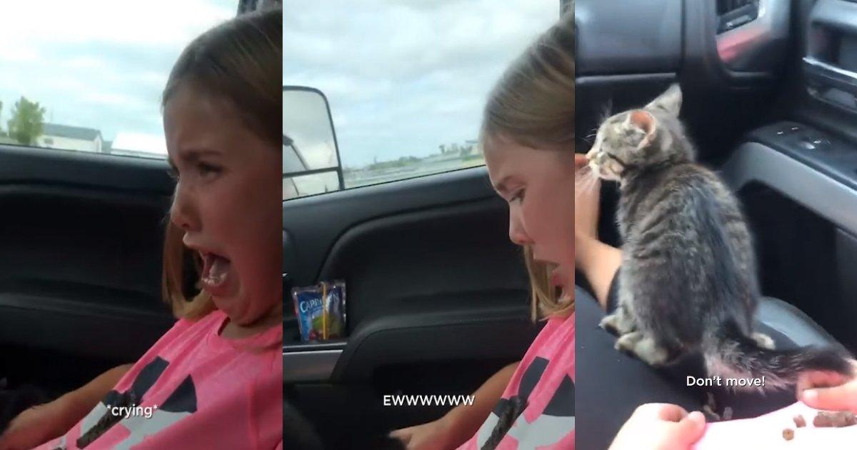 cat poop.jpeg?resize=412,232 - Un chaton n'arrête pas de faire caca sur une fillette dans une voiture et elle craque