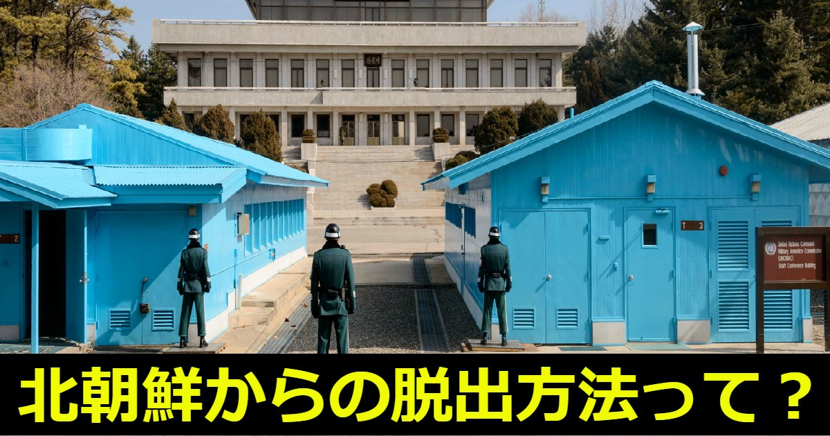 dappoku.png?resize=1200,630 - 北朝鮮から脱出する方法って?年々増加している脱北者たち