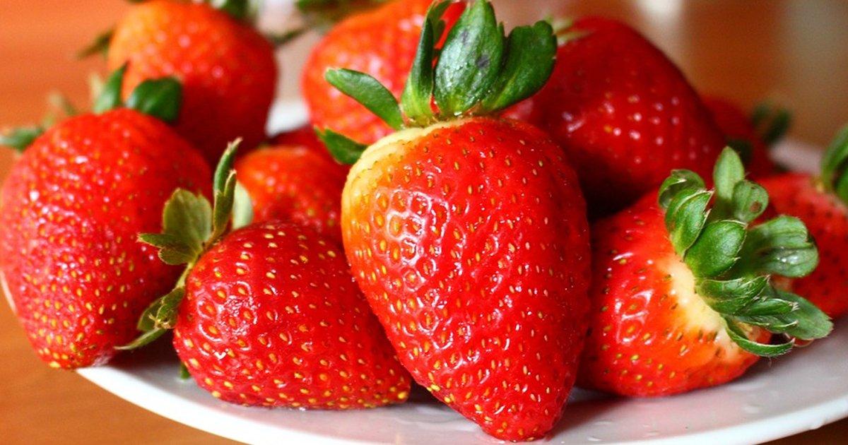 eb94b8eab8b0.jpg?resize=648,365 - 한여름에도 마음껏 먹을 수 있는 토종 '여름 딸기' 출시됐다