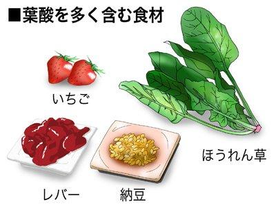 葉酸에 대한 이미지 검색결과