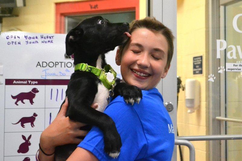 g3 1.jpg?resize=300,169 - Quando uma adolescente com câncer pôde ter um desejo realizado, ela pediu apenas por lares para cãezinhos abandonados