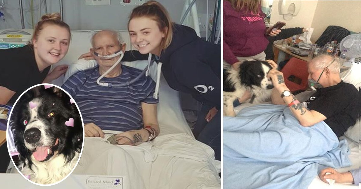 gaa.jpg?resize=412,232 - Dying Man Granted His Final Wish To See His Dog In The Hospital