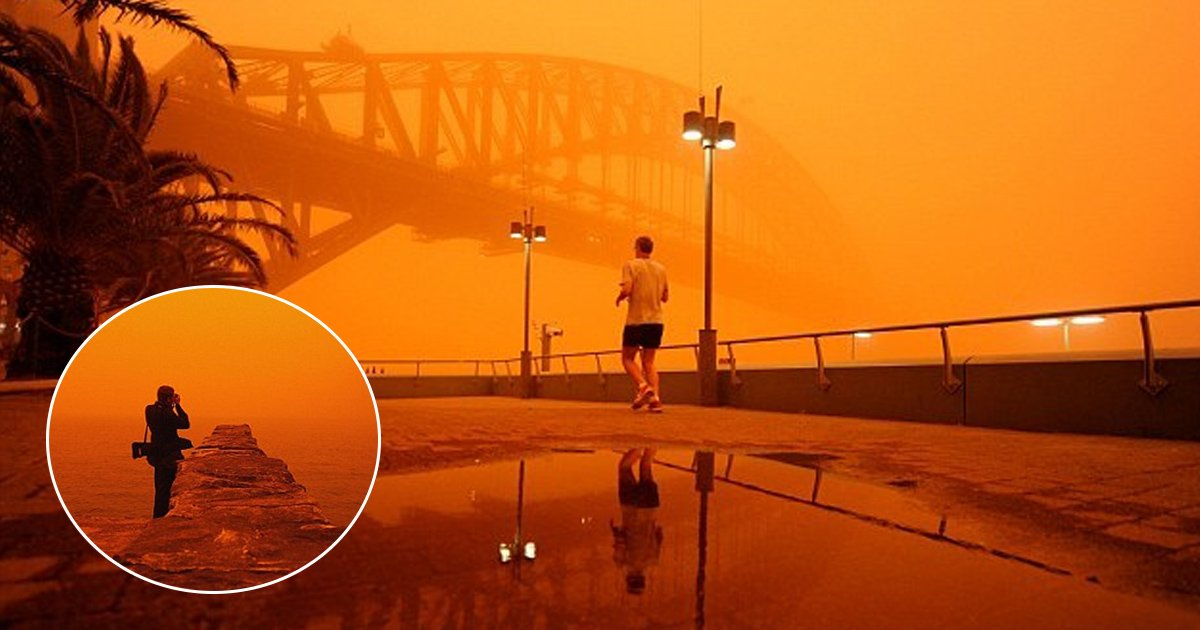 gdgdg.jpg?resize=412,232 - Sydney Could Experience Huge Dust Storms From Tomorrow As Wild Winds And Temperature Continues To Rise In Drought-stricken NSW