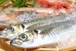 「脂肪分の多い魚」の画像検索結果