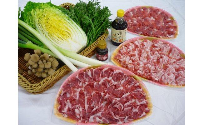 島根県江津市の「まる姫ポークしゃぶしゃぶ肉とサンピコごうつの旬野菜セット」에 대한 이미지 검색결과