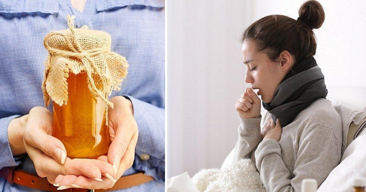 hss 1.jpg?resize=412,232 - Utilisez du miel pour traiter la toux au lieu d'antibiotiques, disent les experts de la santé