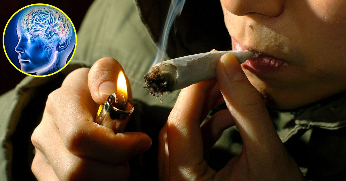 hss.jpg?resize=300,169 - Effects Of Smoking Cannabis Involves The Aging Of The Human Brain By 2.8 Years