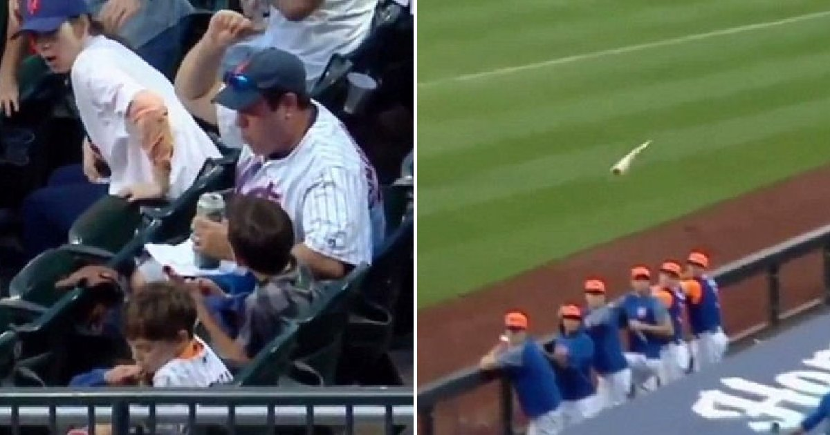 img 5b86b95c3a86f.png?resize=412,232 - 아들에게 날아오는 야구 방망이 한 손으로 막아 낸 '슈퍼맨' 아빠 (영상)