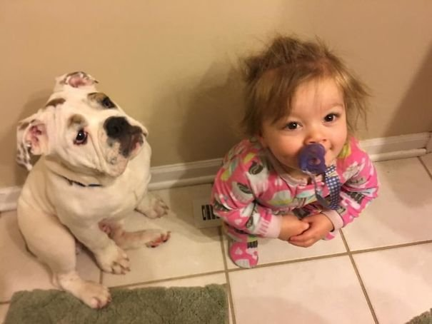 My Puppy And My Baby Girl Fight Over Who