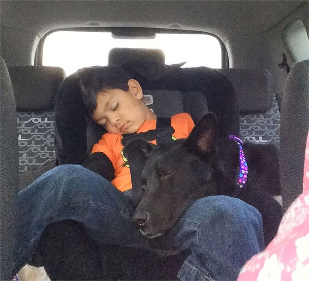 My Son And Our Dog 20 Minutes After We Adopted Her