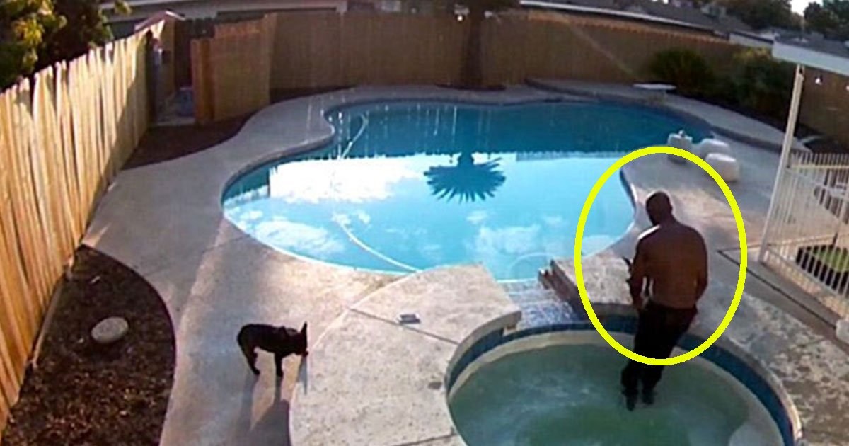 untitled 1 103.jpg?resize=412,275 - Owner Saved His Pet Bulldog From Drowning In A Hot Tub
