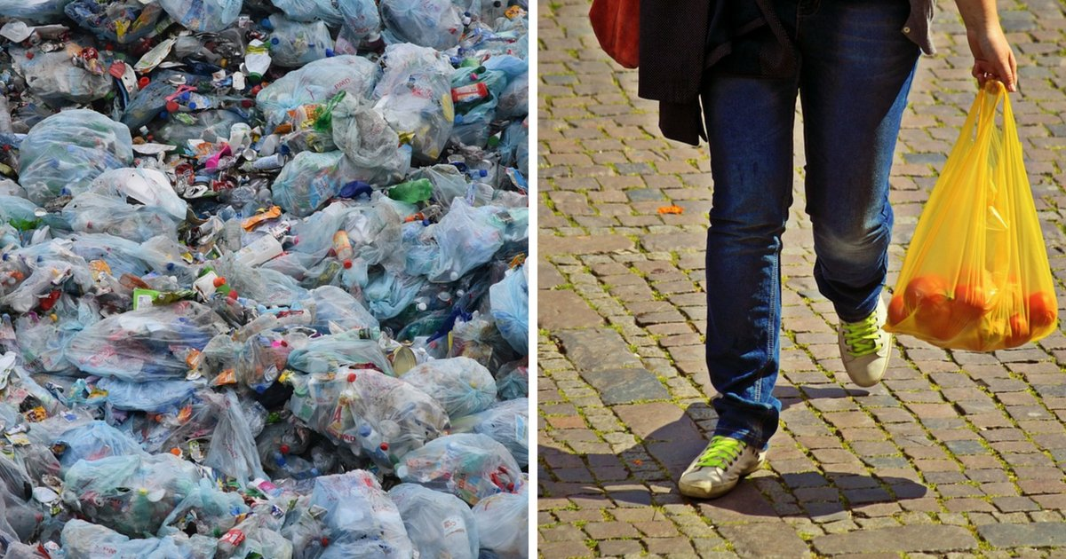 untitled design 6.png?resize=636,358 - Chile Decides To Ban Businesses And People From Using Plastic Bags