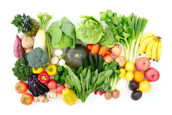 植物性食品中心の食事에 대한 이미지 검색결과