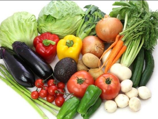 植物性食品에 대한 이미지 검색결과
