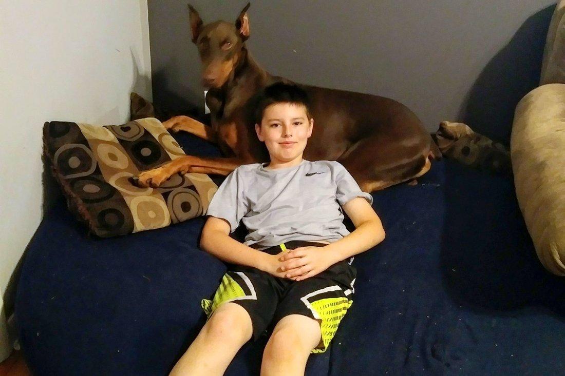 vv.jpg?resize=1200,630 - Garoto de 10 anos coloca à venda seus brinquedos para poder salvar a vida de seu cachorro doente