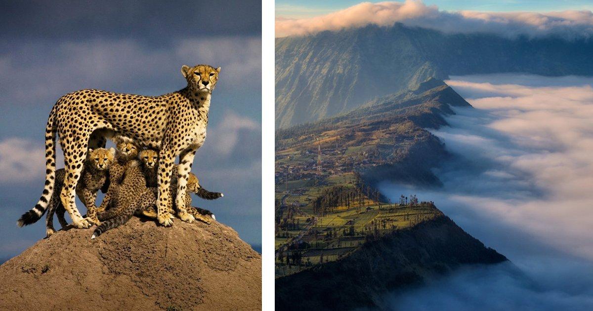 11 102.jpg?resize=1200,630 - 25 Fotos impresionantes que muestran lo inusual que puede ser nuestro mundo