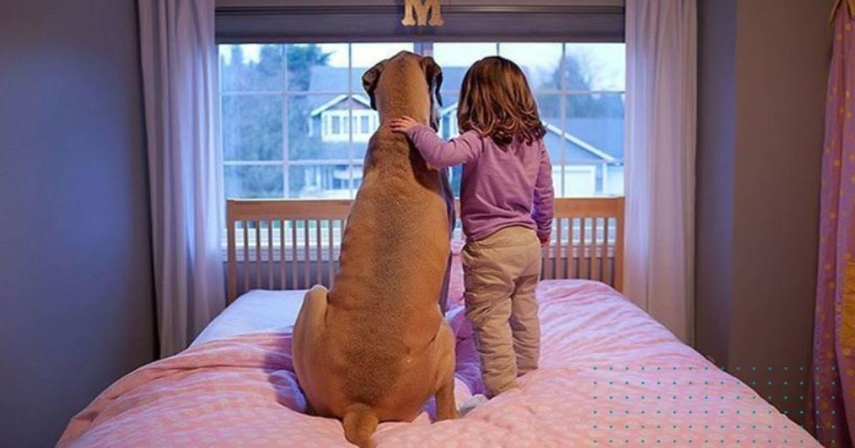 12 72.jpg?resize=1200,630 - 20 Heartwarming Photos That Prove Why All Kids Should Grow Up With A Dog