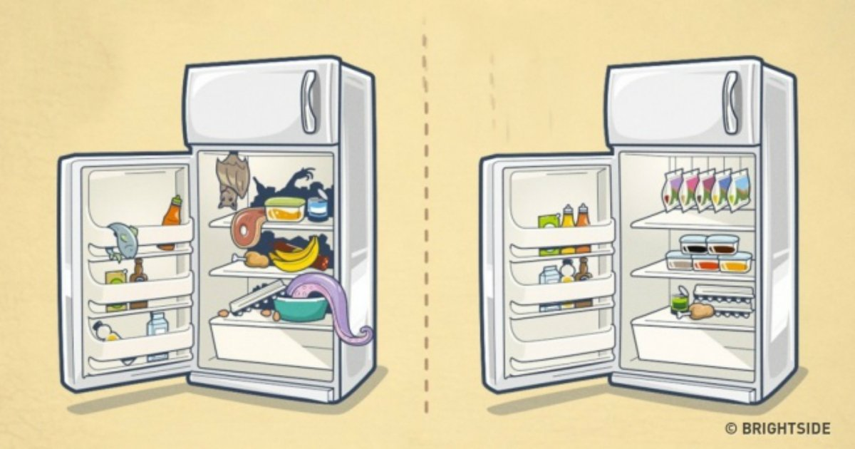 16 17.jpg?resize=1200,630 - 10 brilliant ways to organize your refrigerator