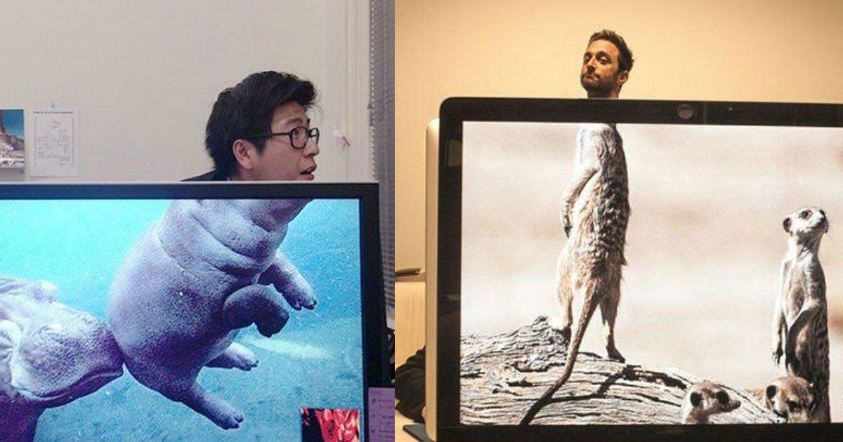3 226.jpg?resize=636,358 - 50 Hilariously Genius Desktop Wallpapers That Will Make You Laugh