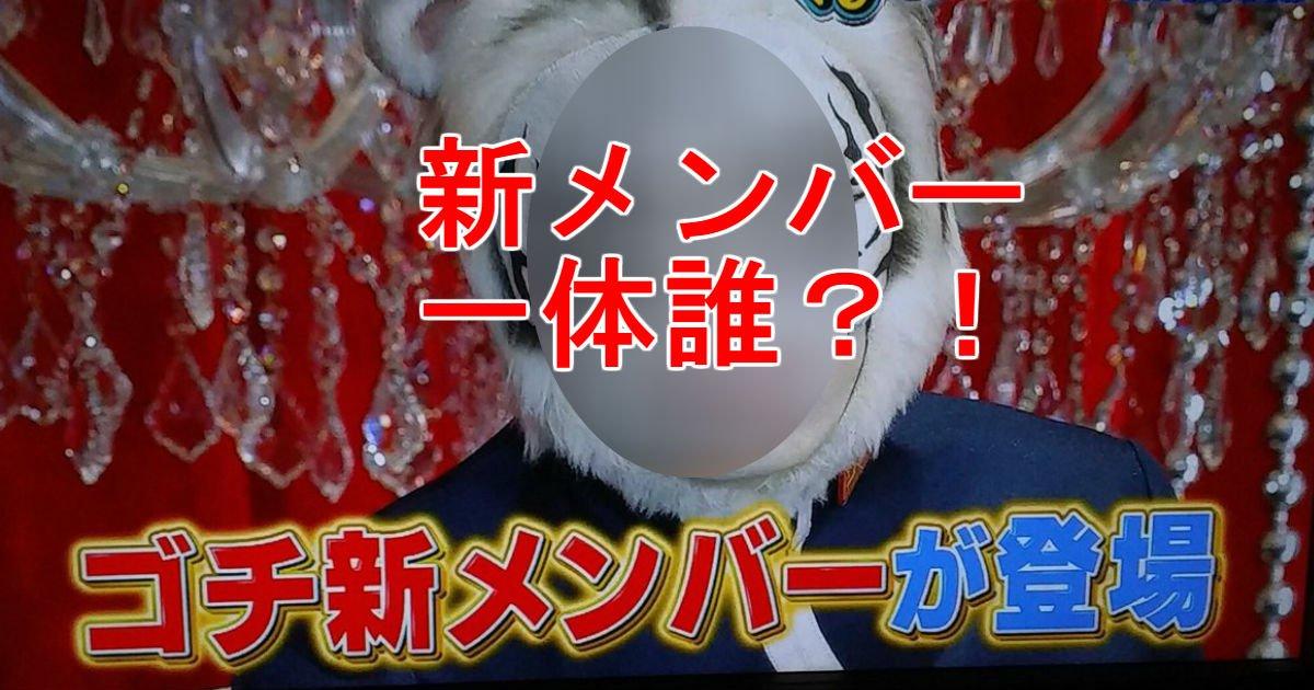 3 82.jpg?resize=636,358 - ゴチ新メンバーの情報あり!!「寅年生まれでバスケが得意」の人物は〇〇しかいない!!!