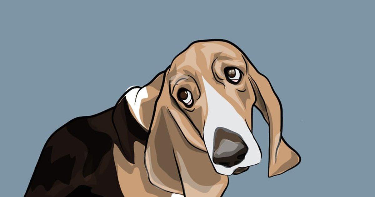 4 75.jpg?resize=1200,630 - 50 Comportamientos De Perros Y Lo Que Significan
