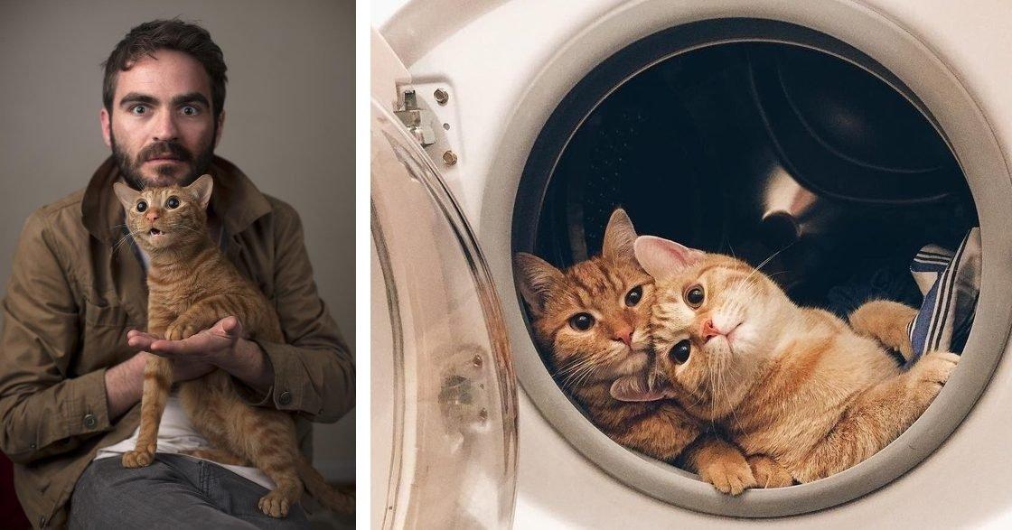 498560 ncc8h0stnoztvgnpwbxm51vsh ne5ldrgmsre0ezb 8 1526296364 728 0306414a55 1526323099 2 e1554865329845.jpg?resize=412,275 - 21 Times Cats Had Us Grinning From Ear to Ear